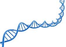 DNA Imagen de archivo libre de regalías
