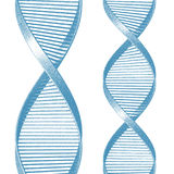 DNA illustrazione di stock