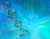 DNA Abstract Royalty Free Stock Image