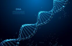 Free DNA. Abstract 3d Polygonal Wireframe DNA Molecule. Medical Science, Genetic Biotechnology, Chemistry Biology, Gene Cell Concept Ve Royalty Free Stock Photography - 184465357
