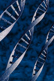 DNA  abstract helix model. Blue translucent DNA helix model with blue freeze background. Hi resolution 3d rendered image Stock Photo