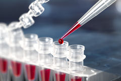 DNA amplification by PCR. Ubes for DNA amplification by PCR royalty free stock image