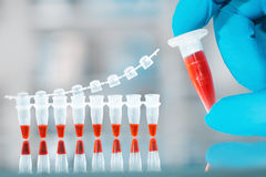 DNA amplification test and reaction mixture in gloved hand. Scientific background, space for your text stock photography