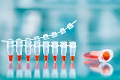DNA amplification test and reaction mixture in larger tube on th. E side, scientific background, space for your text. Shallow DOF, focus on the large tube and stock photo
