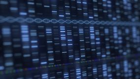 DNA analysis medical software running. Modern medicine or genetics related loopable 3D animation