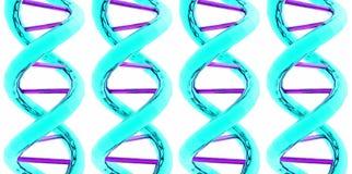 DNA/ARN x 4 Imagen de archivo libre de regalías