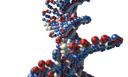 DNA Atom Stem. A microscopic view of a sequenced pattern of DNA style red blue and white atoms on an isolated background stock photo