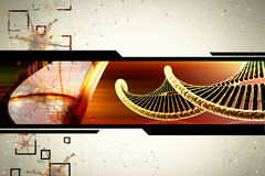 DNA. In attractive  color background Royalty Free Stock Image