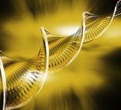 DNA-Auszug Stockfoto