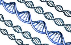 DNA azul excepcional, gen dominante, aislado en el fondo blanco, 3d rendido Fotos de archivo