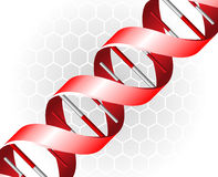 DNA backgound Stock Images