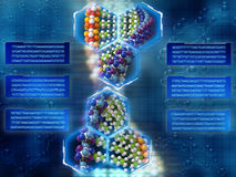 Free DNA Background Stock Photos - 23750593