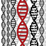 DNA background Stock Photography