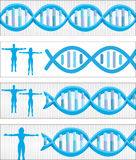 DNA banners Stock Images