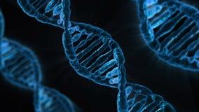 Dna, Biology, Medicine, Gene Stock Photos