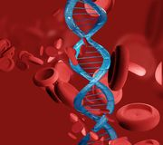 DNA Blood and artery in microbiology 3d rendering. Design Stock Images
