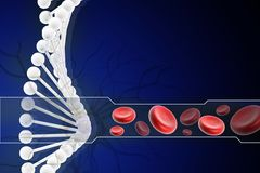 Dna with blood cell Royalty Free Stock Photo