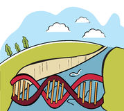 Dna bridge Stock Photography