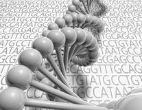 DNA cells 3d model. Stock Photography