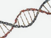 DNA chain. Abstract scientific background. 3D rendering. DNA chain. Abstract scientific background. Beautiful illustraion. Biotechnology, biochemistry, genetics Stock Photo