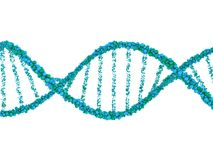 DNA chain. Abstract scientific background. 3D rendering. DNA chain. Abstract scientific background. Beautiful illustraion. Biotechnology, biochemistry, genetics Stock Photos