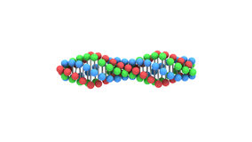 DNA chain. 3D animation. Royalty Free Stock Photos