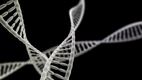 DNA chains on the black background Royalty Free Stock Photography