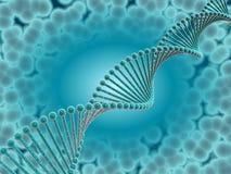 DNA ciánica Fotos de archivo libres de regalías