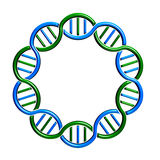 DNA circle Strand Loop. DNA circle Strand infinite loop Stock Photo