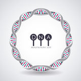 Dna circle structure chromosome design. Dna circle structure chromosome icon. Science molecule genetic and biology theme. Isolated design. Vector illustration Royalty Free Stock Photography