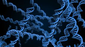 DNA code. Abstract 3d polygonal wireframe DNA. Loop animation. royalty free illustration