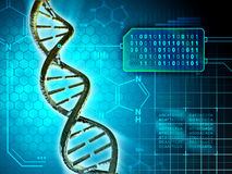 Dna code Royalty Free Stock Image