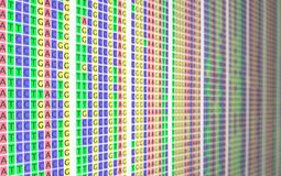 DNA colorful alignment - side blurry. The picture shows an alignment of different amplicons. The picture was takin in 2018 royalty free stock photography