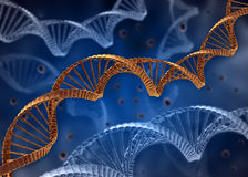 DNA Concept Royalty Free Stock Images