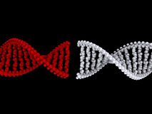 DNA connection Stock Photography
