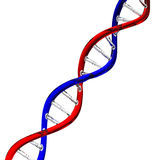 The dna Royalty Free Stock Photo
