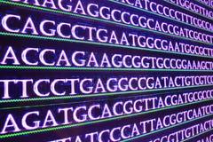 DNA de la secuencia Fotografía de archivo