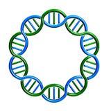 DNA-de Lijn van de cirkelbundel Stock Foto