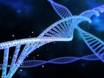DNA del espiral Foto de archivo libre de regalías