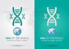 DNA del mundo DNA del símbolo del icono y el mundo con un chromosom Imagenes de archivo
