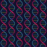 DNA(deoxyribonucleic acid) seamless pattern. Stock Photos