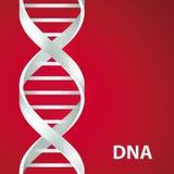 DNA di argento del DNA 3d scaletta, illustrazione, su fondo rosso Fotografia Stock Libera da Diritti