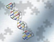 DNA di puzzle su acciaio Fotografie Stock Libere da Diritti