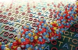 DNA, die Konzept sequenziell ordnet Stockfoto