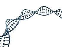 DNA royalty free stock photos