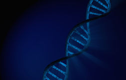 DNA Double helix, blue Detailed with blue background stock photography