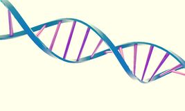 DNA double helix. On a white background Royalty Free Stock Images