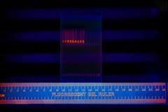 dna electrophoregram rozdzielenie Fotografia Royalty Free