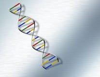 DNA en el acero Foto de archivo libre de regalías