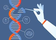 Free Dna Engineering. Genome Crispr Cas9, Gene Mutation Code Modification. Human Biochemistry And Chromosomes Research Vector Royalty Free Stock Image - 138429116